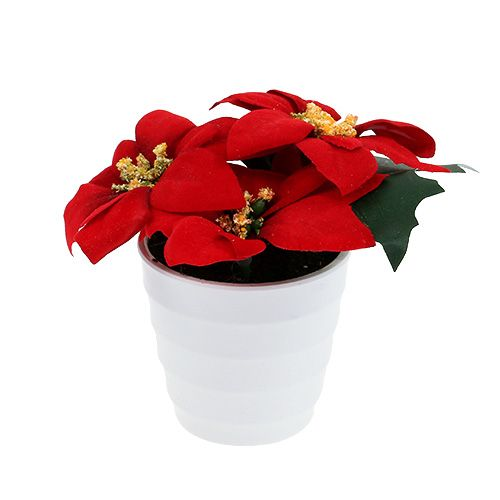 Weihnachtsstern im Topf Rot künstlich H11cm