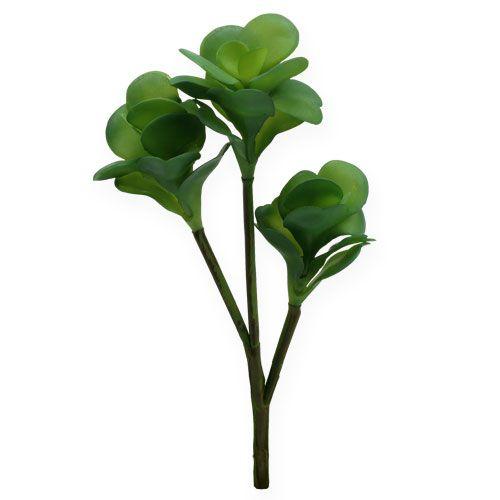Kunstpflanzen Wüstenkohl Grün 25cm 3St