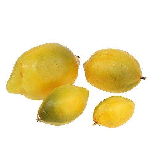 Zitronen Mix 6cm - 12cm Gelb 12St