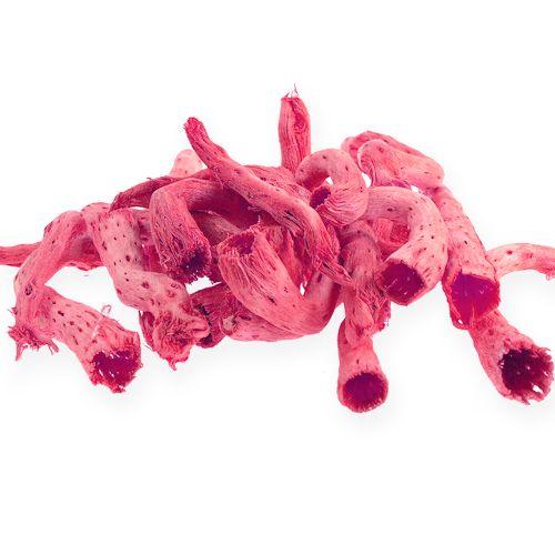 Cupy-Wurzel in Hell-Pink 350g