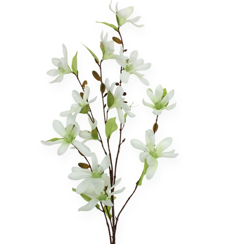Magnolienzweig Hellgrün 90cm