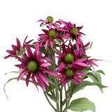 Echinacea Blüte künstlich Erika 45cm 3St