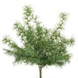 Künstlicher Pinienzweig Grün 53cm 3St