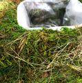 Mooskissen zum Bepflanzen 20cm x 20cm 3St