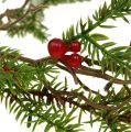 Tannengirlande mit Beeren Grün, Rot L119cm