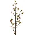 Kirschblütenzweig Rosa 90cm