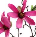 Magnolien Zweig Pink 40cm 4St